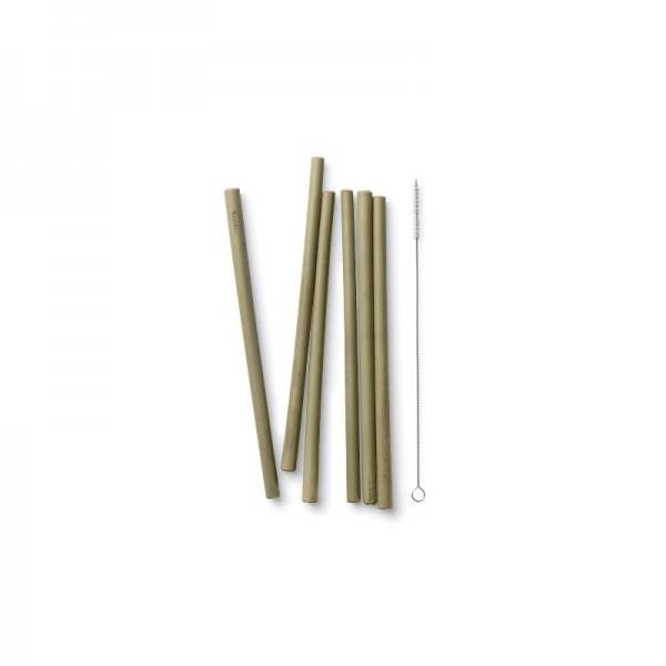 Bamboo Straws set of 6